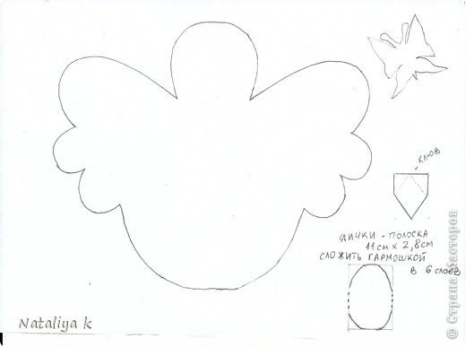 Лицевая сторона фото 3