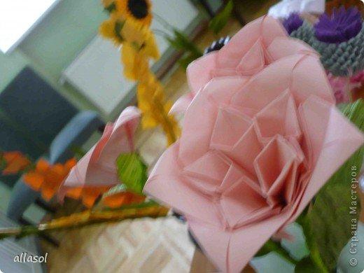 Мы решили, что это роза. Хотя в описании - пион. фото 19