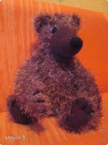 Медведь Мирон фото 2