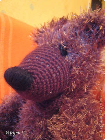 Медведь Мирон фото 1