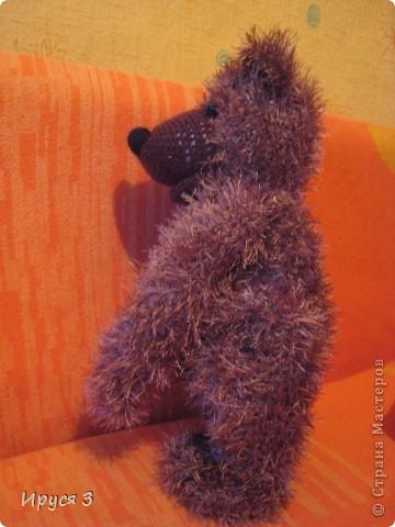 Медведь Мирон фото 3