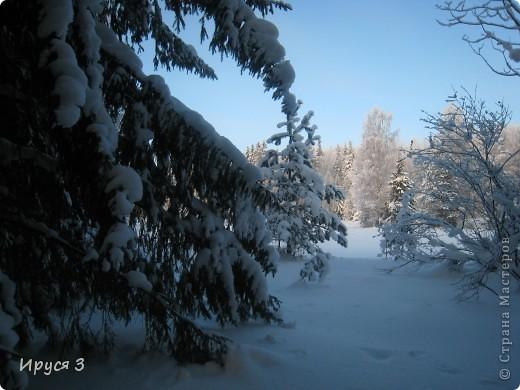 Зимние пейзажи  фото 8