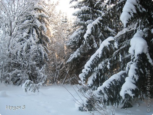 Зимние пейзажи  фото 9