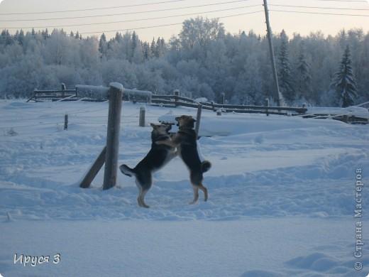 Зимние пейзажи  фото 11