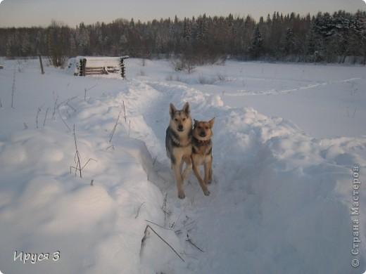 Зимние пейзажи  фото 28