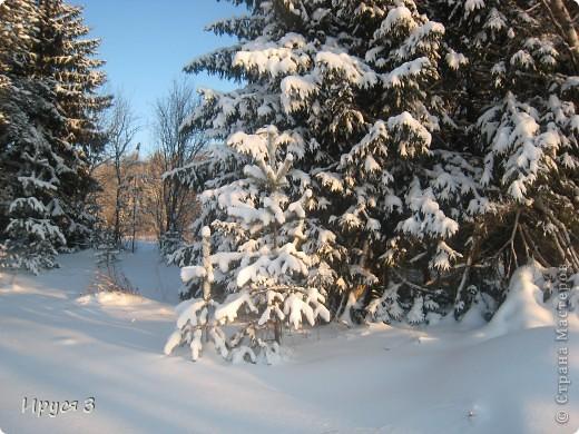 Зимние пейзажи  фото 27