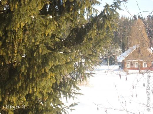 Зимние пейзажи  фото 23