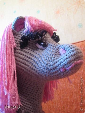 Лошадка Карамелька фото 5