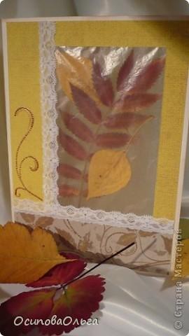 Открытка внутри листика, веселые совы открытки