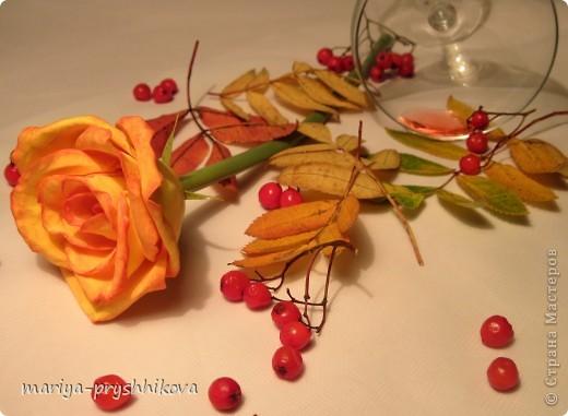 Осенний блюз фото 2