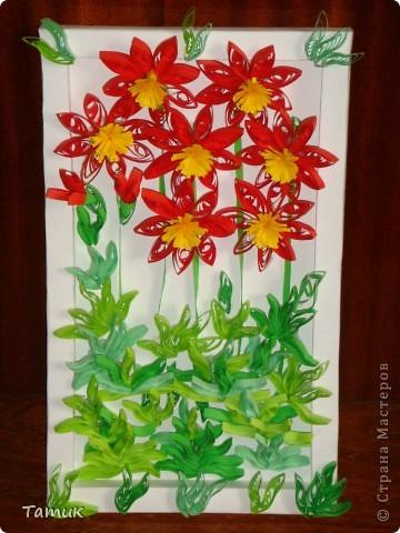 Красные цветы фото 1