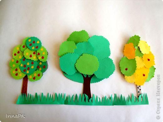 Изучали с детьми деревья. фото 5