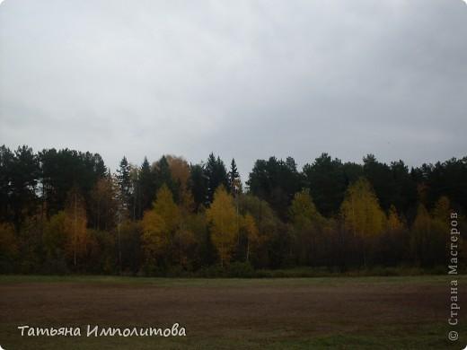 Унылая осень фото 1
