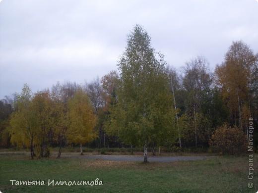 Унылая осень фото 2