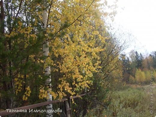 Унылая осень фото 8