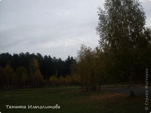 Унылая осень фото 12