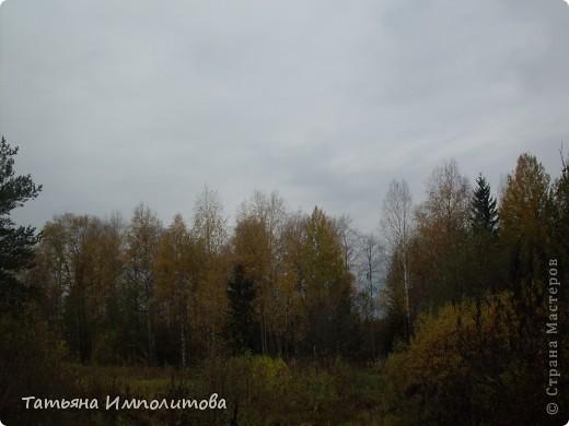 Унылая осень фото 13