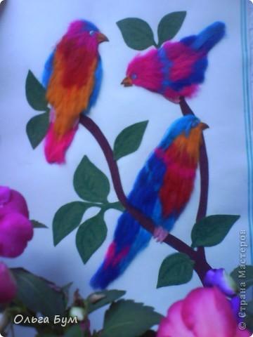 Птички пушистые на ветке.