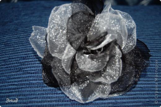 Роза сделана по этому МК  http://kuznetsova-art.narod.ru/photoalbum-8.html  У меня роза из капрона, наверно поэтому не похожа на оригинал. фото 1