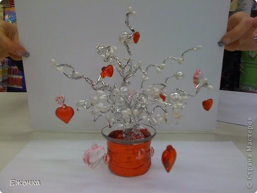 Дерево с монетками фото 3