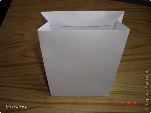 Вот такие пакетики я сделала в подарок на скорую руку.  фото 14