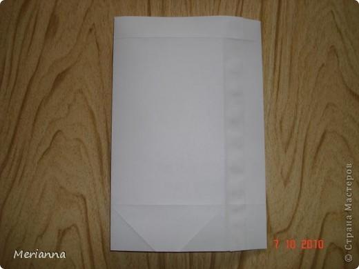 Вот такие пакетики я сделала в подарок на скорую руку.  фото 9