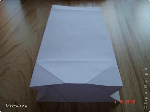 Вот такие пакетики я сделала в подарок на скорую руку.  фото 10
