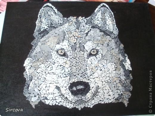 В. Ножко «волк» фото 1