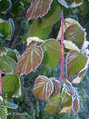 Природа в октябре фото 9