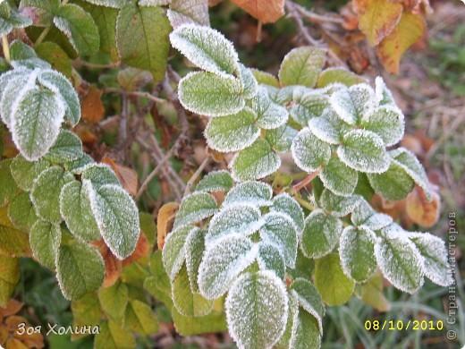 Природа в октябре фото 3