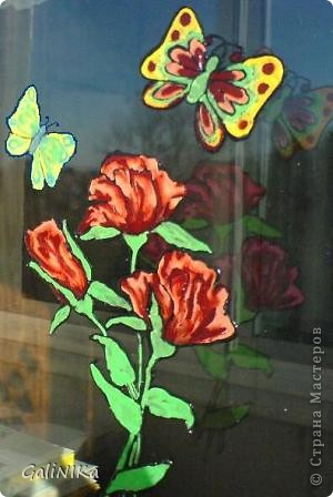 Бабочка утром фото 5