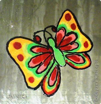 Бабочка утром фото 2