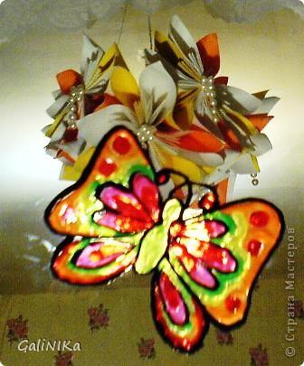 Бабочка утром фото 3