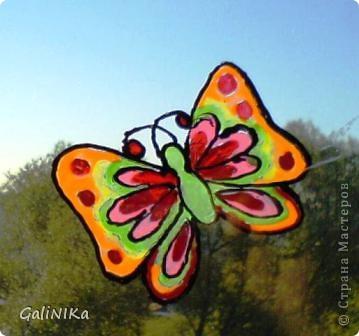 Бабочка утром фото 1