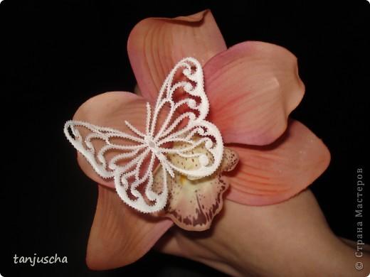 Бабочка пергамано фото 3