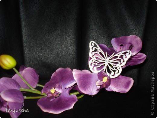 Бабочка пергамано фото 2