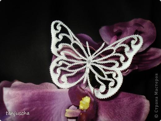 Бабочка пергамано фото 1