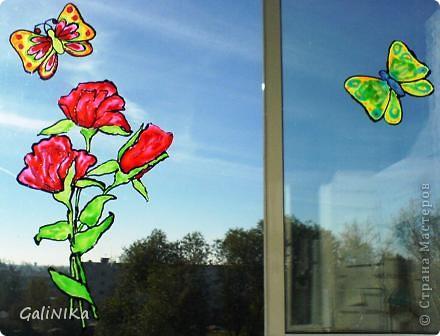 Бабочка утром фото 6