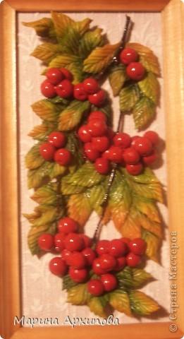 Представляю небольшую рябиновую коллекцию - осень на дворе!!! фото 7