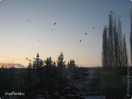 очень люблю смотреть на небо,особеннно из окна(не фотошоп) 5 ноября 2009г фото 4