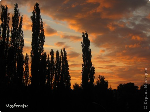 очень люблю смотреть на небо,особеннно из окна(не фотошоп) 5 ноября 2009г фото 28