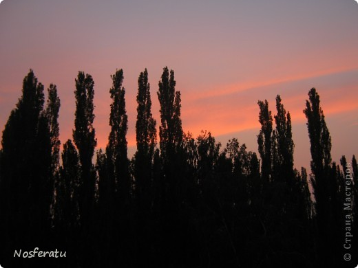 очень люблю смотреть на небо,особеннно из окна(не фотошоп) 5 ноября 2009г фото 29