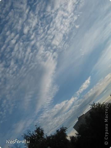 очень люблю смотреть на небо,особеннно из окна(не фотошоп) 5 ноября 2009г фото 30
