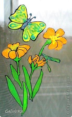 Бабочки и цветочки фото 3