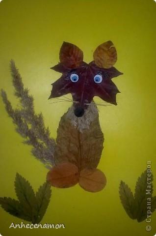 Хитрый лис