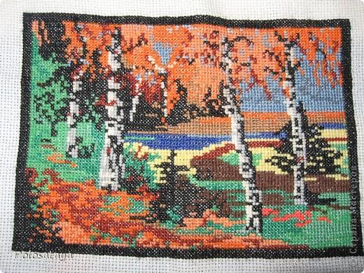 Осень в лесу фото 1