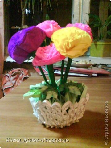 Цветы в горшке фото 1