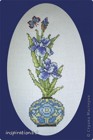 Изысканно- волшебные цветы Небесно- голубым огнем в саду пылают. Их нежные воздушные черты Изяществом своим поэтов вдохновляют.