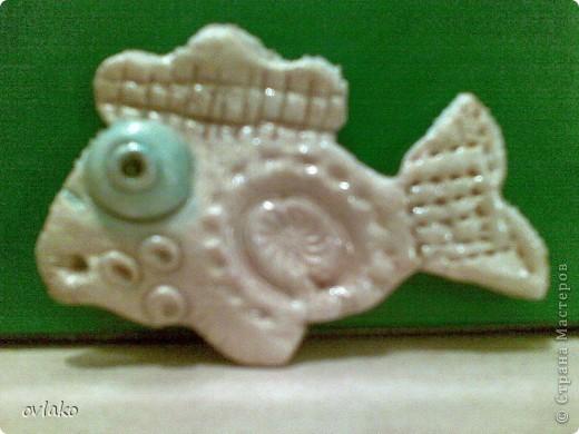 рыбки моих детей фото 2