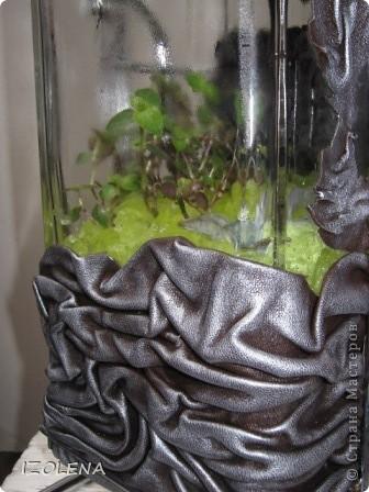Вид спереди. Цветы (традесканцию и очиток) посадила в гель. фото 7
